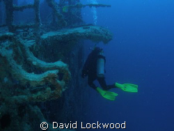 Surveying the expanse of Spiegel Grove, Key Largo, Florida by David Lockwood 